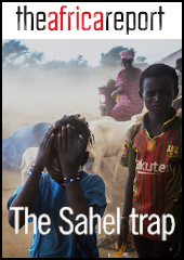 Get your free PDF: The Sahel trap