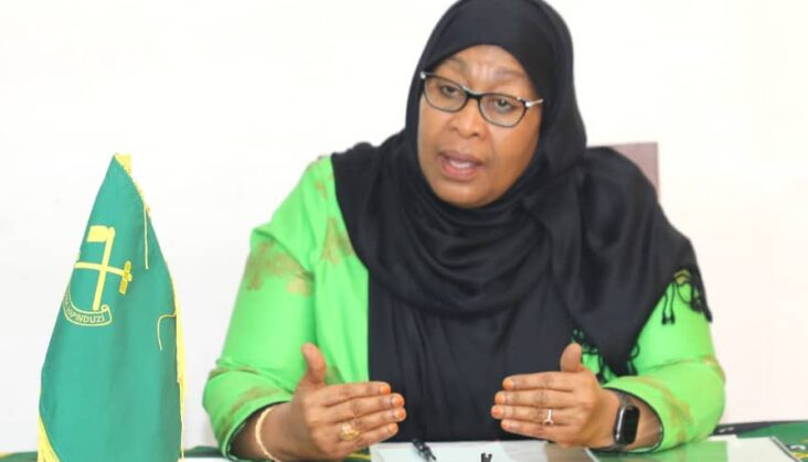 Tanzania's Magufuli remains absent, so will VP Samia Hassan Suluhu take over?
